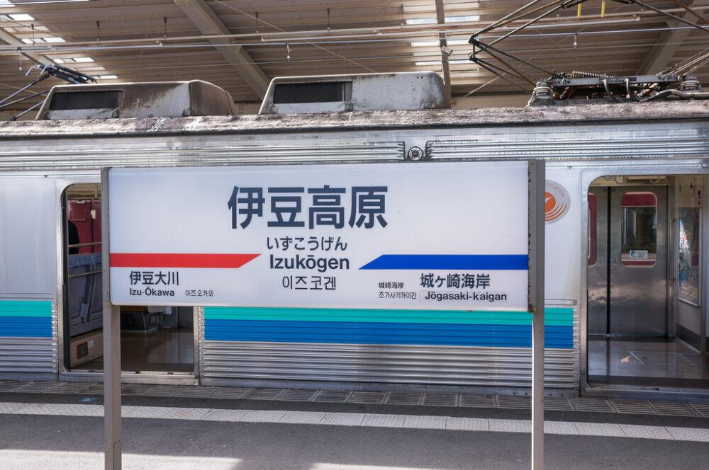 伊豆高原に来たら食べなきゃ損!おすすめソフトクリーム&かき氷